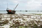 Рыбацкие лодки на побережье Занзибара
