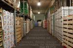 Нужен фотограф на склад? Заказать фотосъемку складских помещений можно по телефону: (812) 909-27-32, Владимир