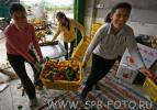 Азиатские  апельсины готовят к расфасовке, фото