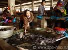Живая рыба на рынке деревни Фули