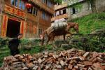 Da Yao Zhai village, Guanxi province, south China