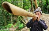 Miao Play Bamboo