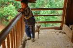Подросток из деревни Баша на крыльце своего дома, с парой охотничьих собак, фото