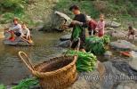 Женщины и дети из деревни Zengchong (Юго-западный Китай), моют зелень в местной реке