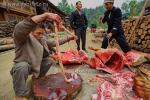 Свиные кишки в руках китайца, сортирующего внутренности животного, забитого для поминального ритуала в деревне Зенчон, провинция Guizhou (贵州), Юго-западный Китай, 12 апреля 2010 года, 9 часов 46 минут утра