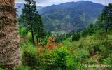 Природа Юго-западного Китая в апреле