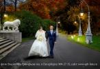 Свадьба в октябре, фотосъемка возле  Елагина дворца, Елагин остров Санкт-Петербурга, ЦПКО, фотограф Владимир Григорьев <a target=_blank href=http://spb-foto