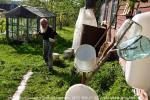 Последний житель Пятого поселка «Русской Америки», следит за своим приусадебным хозяйством с тем же рвением, и по тем же правилам, что и любой сельский житель