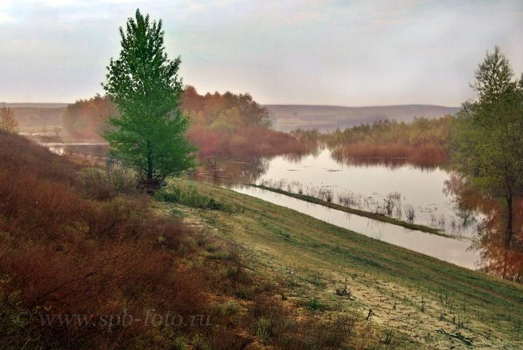Река  Ахтуба, весенний разлив, фото
