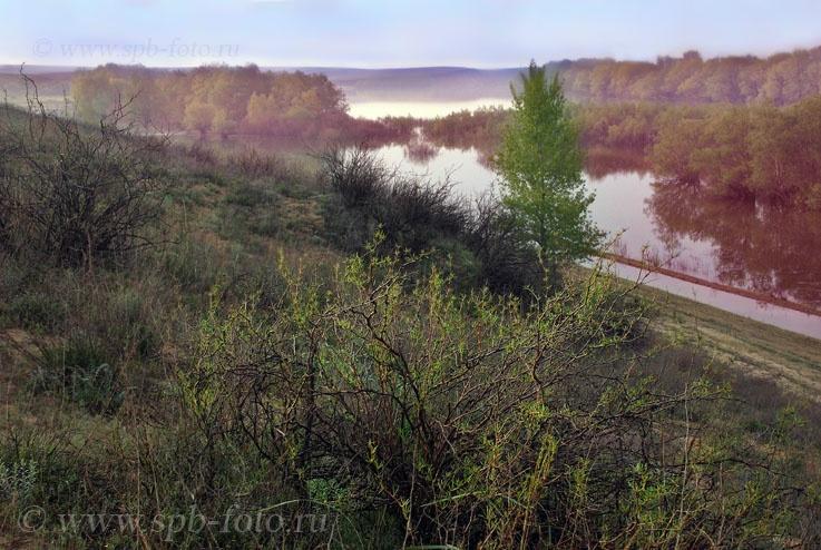 Река Ахтуба — левый рукав Волги, фото