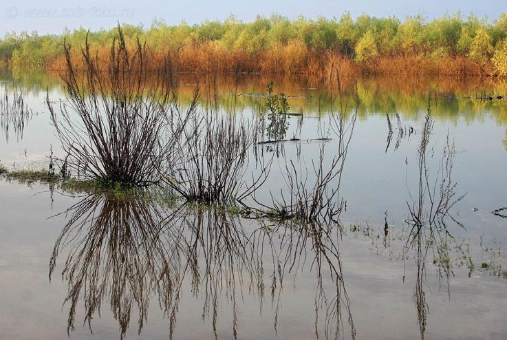 Астраханская область, река Ахтуба, фото
