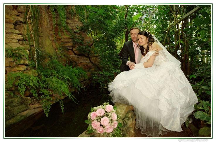 Места для свадебных прогулок, ботанический сад