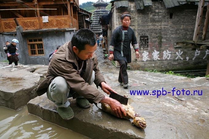 Употребление собачьего мяса в пищу, Китай