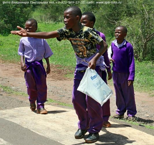На дорогах Танзании