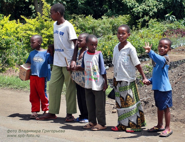 Танзанийские пешеходы