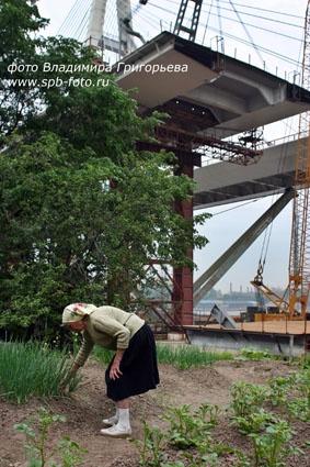 Огород под Вантовым мостом.